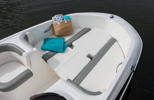 Motorboat Bayliner Element E5
