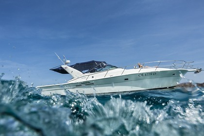 Hire Motorboat Riviera 4000 off-shore Palau