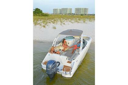 Hire Motorboat Nauticstar 210 Miami