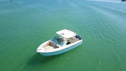 Rental Motorboat Sailfish Center Console Miami