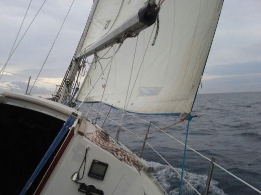 Location Jeanneau Aquila 224 Six Fours Les Plages Click Amp Boat