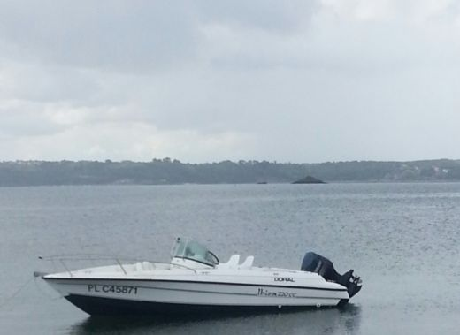 Motorboat DORAL Ibiza 220cc for hire