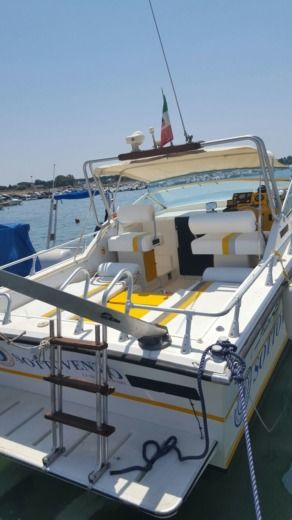 FIART MARE Fiart Thendem 33 in Porto Cesareo LE for hire