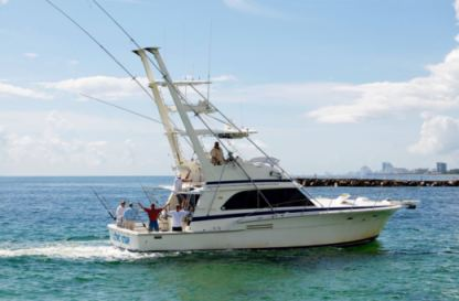 Rental Motorboat Bertram 46' Fort Lauderdale