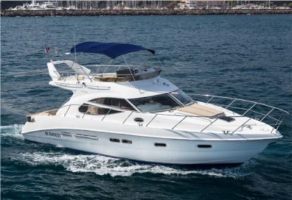Rental Motorboat Sealine F 425 Juan les Pins