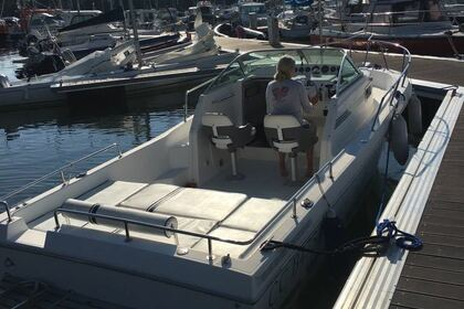 Hire Motorboat Kelt White Shark 237 Bénodet