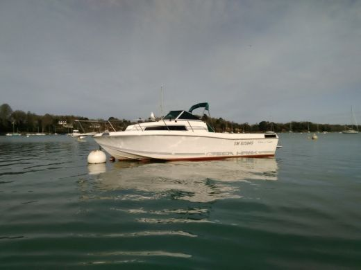 Chris Craft Sea Hawk 266 in Dinard for hire