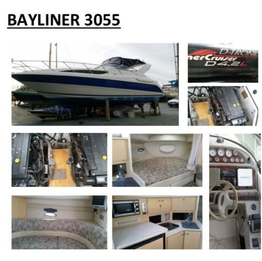 Motorboat Bayliner 3055 for hire