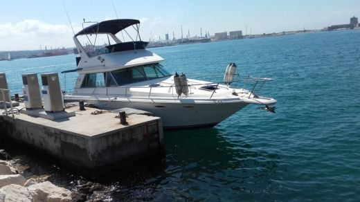 Barca a motore Sea Ray 37 Sedan Fly tra privati