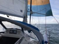 Sailboat Kelt Kelt 9 M Quillard for rental