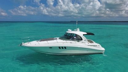 Charter Motorboat Searay Sundancer 40 Cozumel