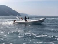 Gommone Bat 745 Artic da noleggiare