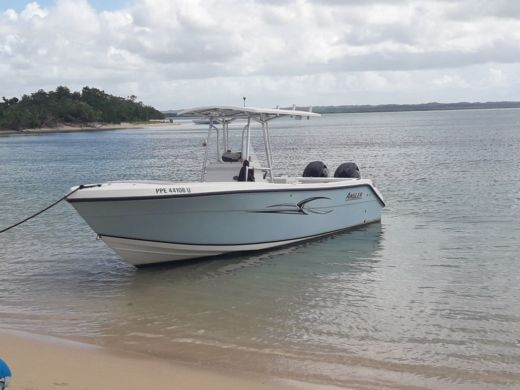 De Vries International Angler 2600Cc à Pointe-à-Pitre de particuliers et professionnels