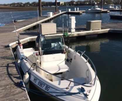Rental Motorboat Campion 492 Explorer Boston