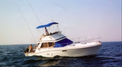 Rental Motorboat Trojan 35' Chicago
