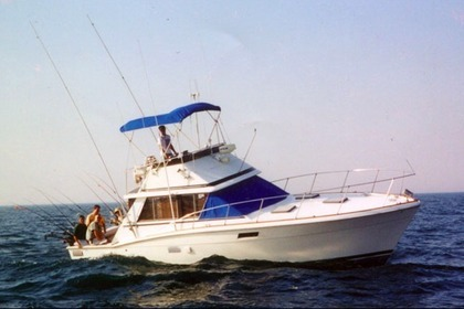 Charter Motorboat Trojan 35' Chicago
