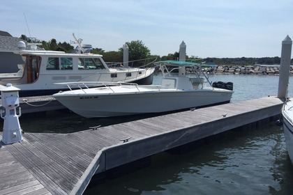 Hire Motorboat Avanti 33 Freeport