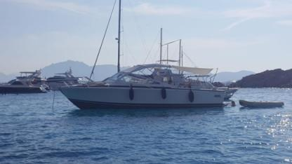 Rental Motorboat Bertram 28 Olbia