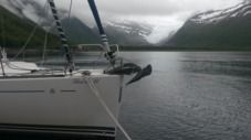 Charter sailboat in Norway