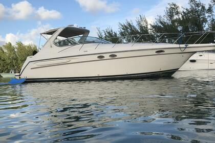 Rental Motorboat Maxum 39 Miami