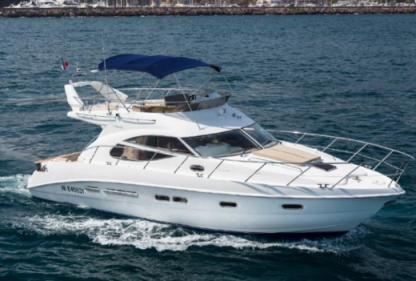 Charter Motorboat Sealine Flybridge Southampton
