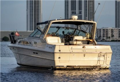Rental Motorboat Sea Ray Express Cruiser 36 Aventura