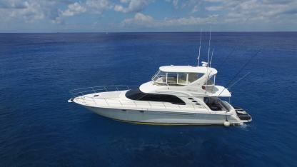 Charter Motorboat Searay 55 Cozumel