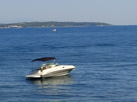 Motorboat Sea Ray 240 Sundeck V8 350 CV for hire