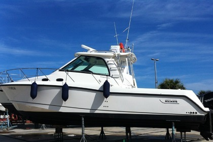Rental Motorboat BOSTON WHALER BOSTON WHALER FISHERMAN Torre Pali