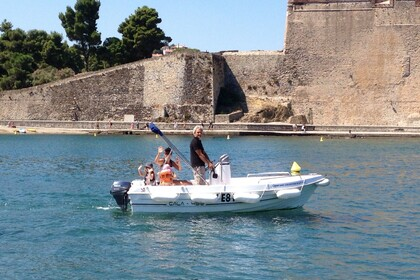 Rental Motorboat DIPOL GLASS Cala 450 Collioure