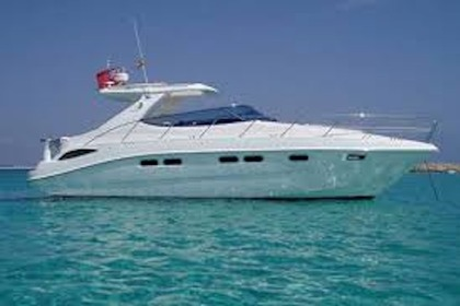 Hire Motorboat SEALINE 42 Antibes