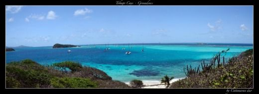 Location Catamaran Lagoon 380 Îles du Vent