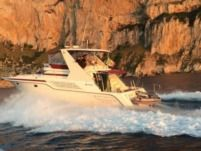 American Cruiser 42.80 Flybridge in Palermo for rental