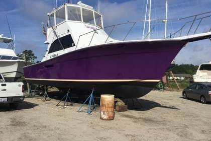 Hire Motorboat Henriques Sportfisher Atlantic Beach