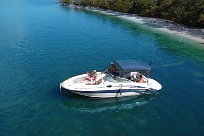 Аренда Моторная яхта Sea Ray 240 Sundeck Майами