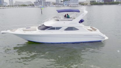 Charter Motorboat Sea Ray 44' Miami Beach