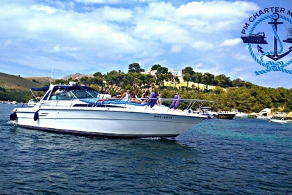 Miete Motorboot SEA RAY 460 Pollença