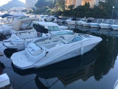 Rental Motorboat Sea Ray Boats 260 Sundeck Cannes