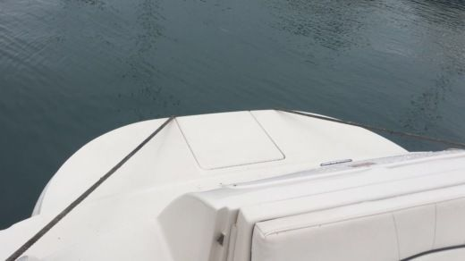 Motorboat Sea Ray Sundeck 240