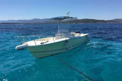 Hire Motorboat White Shark Barca a motore Olbia