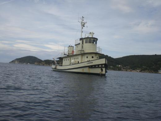 N.c EX TUG Canadese in Portoferraio peer-to-peer