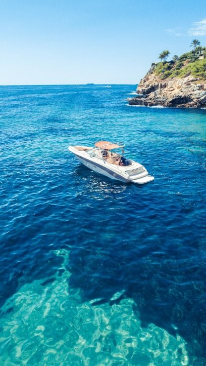 Rental Motorboat Sea Ray 260 Mallorca