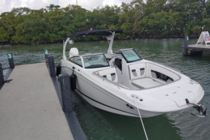 Charter Motorboat Four Winns HD8 Miami