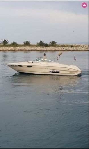 Sea Ray 220 Signature in Supetar for hire