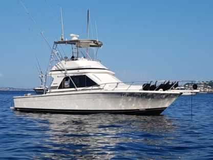 Rental Motorboat Black Fin 38 Fishing Naples