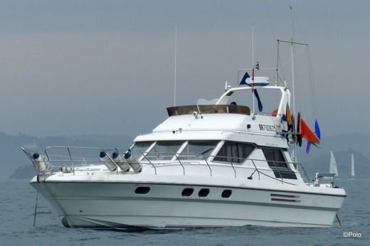 Motorboat Marine Project Princess 45 for hire