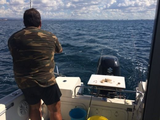 Saver Cabin Fish in Taranto peer-to-peer