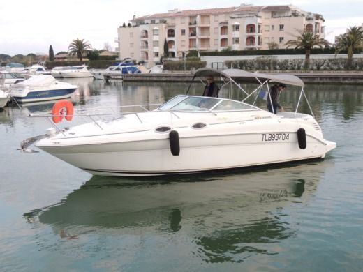 Motorboat Sea Ray Sundancer 260 for hire