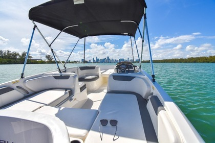 Charter Motorboat BAYLINER Element XL Miami
