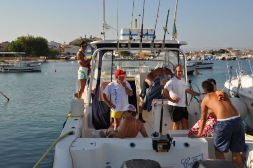 Boston Whaler Conquest 305 a Marzamemi da noleggiare
